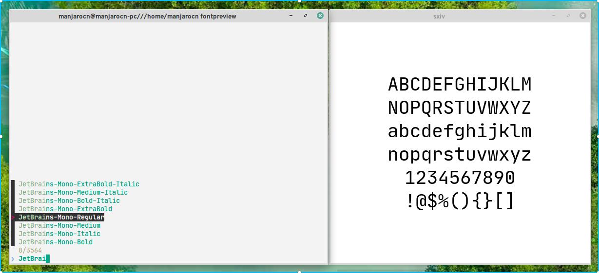 JetBrains Mono截图